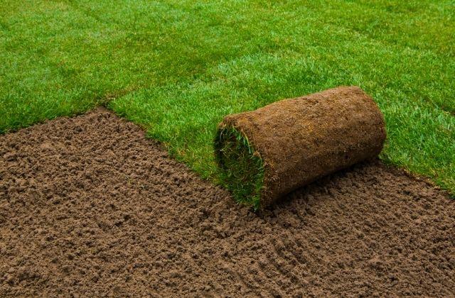 Zakładanie trawnika narzędziami BMK